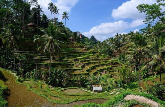 Sejur combinat Bali plaja și în Ubud