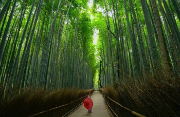 Arashiyama - Kyoto, Japonia