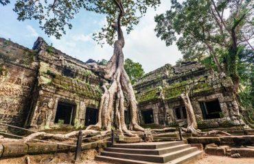Ta Prohm- Cambodgia