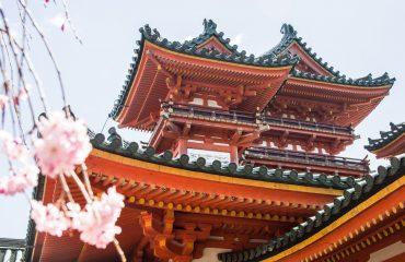 Japonia exact-11