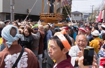 Japonia exact-5