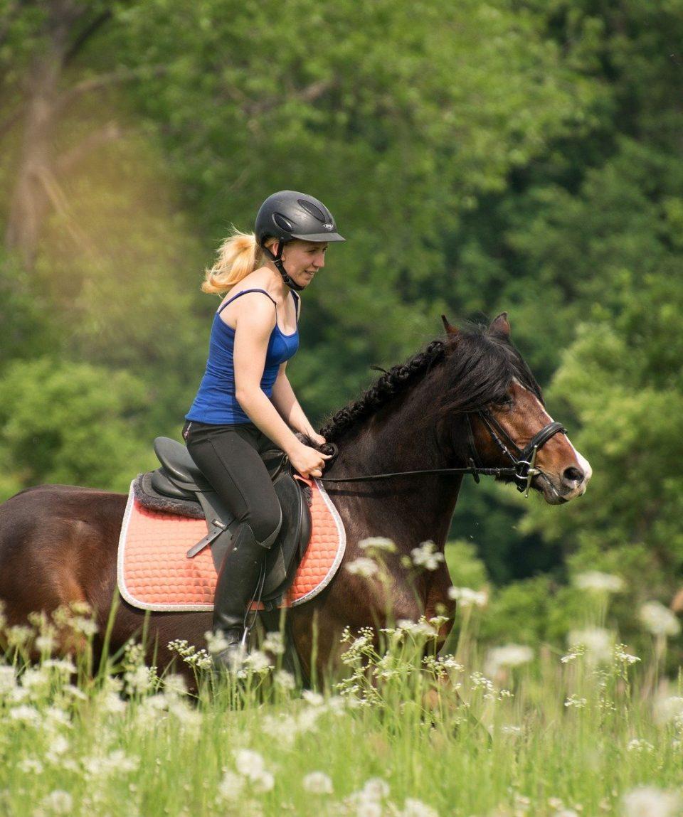 Lectii echitatie Equus Silvania