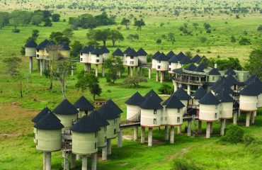 Salt Lick Safari Lodge - Kenya 3